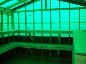 Green House 059